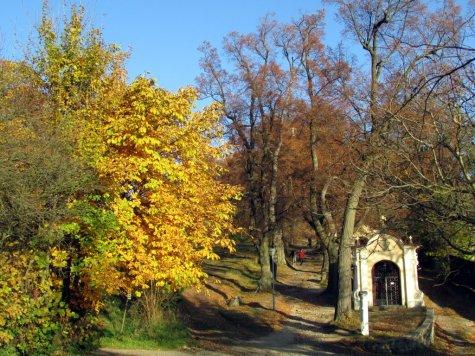 Banska_Szczwanica_jesien_pod_Kalwaria