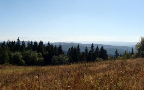 Koskowa_Gora_panorama_Tatr_2
