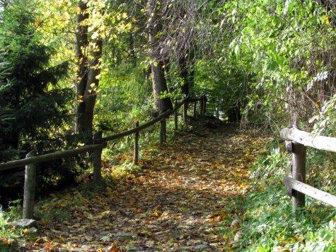 Szlak_w_kierunku_Bacowki_pod_Beresnikiem